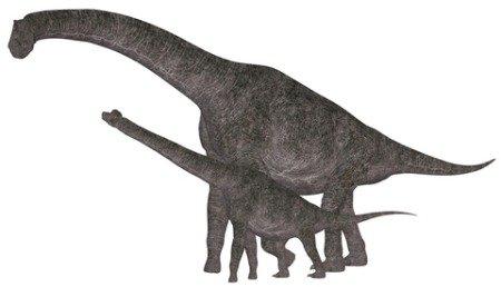 xbrachiosaurus-dinosaur.jpg.pagespeed.ic.fha7ejhjvm