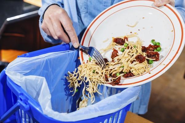 food-waste-plate