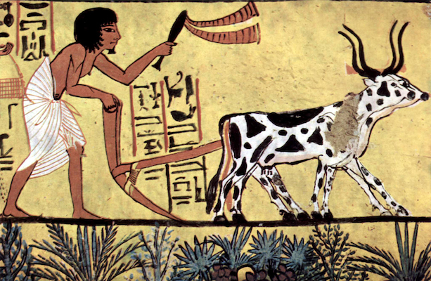 agriculture-history