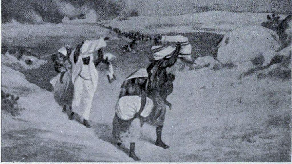delhi-timur